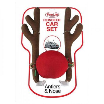 Reindeer Car Costume
