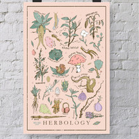 Harry Potter Herbology Print / Poster - 12 x 18 Wall Art - Illustrated Hogwarts Class Print / home and wall decor / Muggle