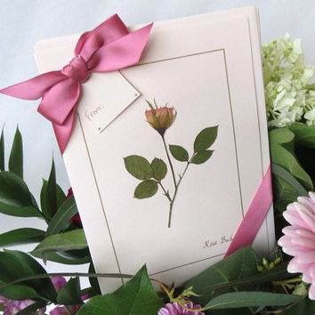 Pink Rose Bud Cards, 4 Blank Greeting Cards, Gift Set For Her, Mother's Day Cards, Happy Birthday Cards,Thank You Gift, Pressed Flowers