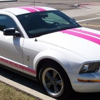 "Pink Dual 10"" Racing Stripe Kit For Ford Mustang & GT 05-09"