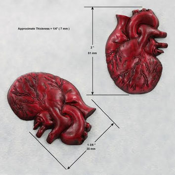 Anatomical Heart Mold Silicone Mould Resin Chocolate Fondant Clay Wax (346)