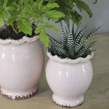Powder Pink Ceramic Scallop Edged Planter