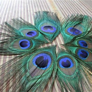 DCCKH6B 100pcs trimmed peacock feather peacock eye feather for costumes party design costume supply