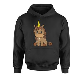 Unicorn in Cone Hat Youth-Sized Hoodie