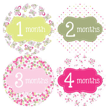 Baby Girl Monthly Baby Stickers Style #036