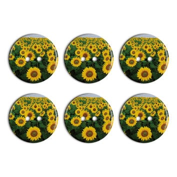 Field of Sunflowers Plastic Resin Button Set of 6