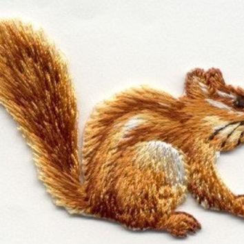 Chipmunk Squirrel Wildlife Iron On Applique Patch or sew on Looks Real by Cedar Creek patch Shop on Etsy