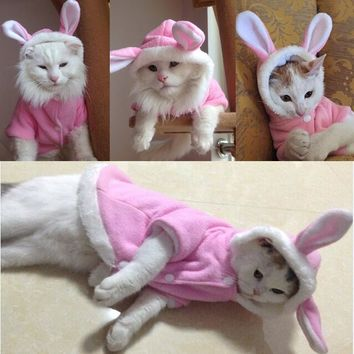 New Cute Pet Cat Clothes Easter Bunny Costume Cats Dogs Hoodie Coat Cotton Warm Rabbit Outfit Clothing for Cats V49