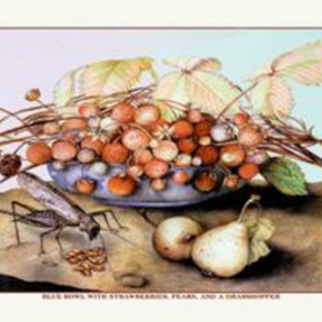 Bowl of Strawberries, Pears and a Grasshopper: Fine art canvas print (12 x 18)