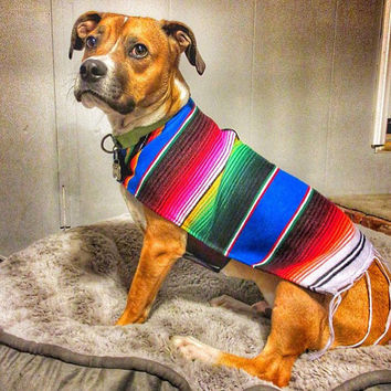 Dog Clothes - Handmade Dog Apparel From Authentic Mexican Blanket. Premium Quality Dog Poncho with Fringed Edge by K9 Ponchos.