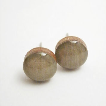 Taupe Earrings - Taupe Studs - Wood Earrings