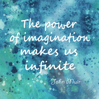 Imagination Muir Quote