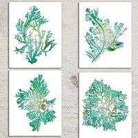 Turquoise Teal Wall Art, Seaweed Prints Teal Seaweed Prints, Turquoise Home Decor Seaweed Illustrations, Coral, Seaweed Print Set, Teal Mint