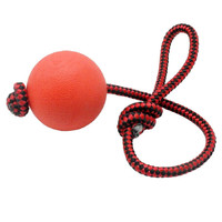 Solid Rubber Dog Chew Training Ball Toys Puppy Pet Play Toy With Rope Handle