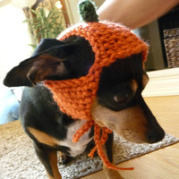 Halloween Costume for Dog CROCHET PATTERN Dog Costume Pumpkin Hat Fall Costume Dog Hat for Dog Wearing Hat Dog Photography Prop Orange Hat