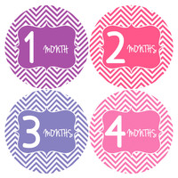 Baby Girl Monthly Baby Stickers Style #127