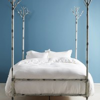 Birch Forest Four-Poster Bed