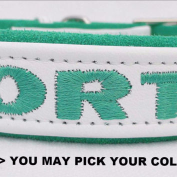 "Dog collar: Leather w/ Suede - 1"" Wide Adjustable - Personalized  (Sizes 12-22) Example 1:"