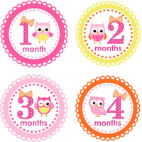 Baby Month Stickers Baby Monthly Stickers Girl Monthly Shirt Stickers Hoot Owl Pink, Yellow Shower Gift Photo Prop Baby Milestone Sticker