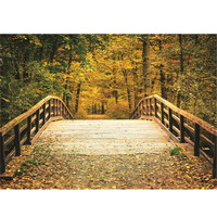 7x5ft Bridge Autumn Photography Backdrop Photo Background Props Studio Vinyl Wall Art