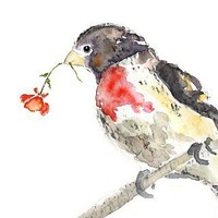 Watercolor Bird with Rose - 8x10 Art Print - Puff of Romance