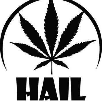 Hail Mary Jane Holy Marijuana Funny Decal Sticker