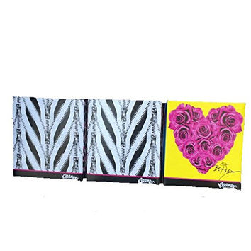 Betsey Johnson xox Limited Edition 3 Bundle Pack of Kleenex- Hearts made of Roses, Pink on Pink & Animal Print-each Box Has 74, 2-ply White Tissues-total 3 Boxes