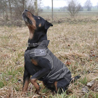 Black Rain Jackets / All-Year Jackets for Dogs