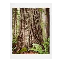 Bree Madden Redwood Trees Art Print