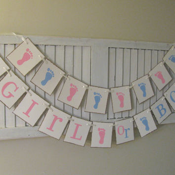 Gender Reveal Decoration Gender Neutral Baby Shower Banner Garland Bunting Sign Blue and Pink Boy or Girl