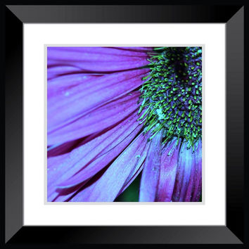 macro flower photography purple and green flower decor wall art home decor nursery bathroom living room bedroom