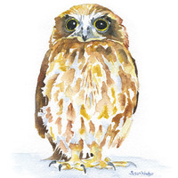 Burrowing Owl Watercolor Giclee - 4 x 6 - Watercolor Painting Reproduction