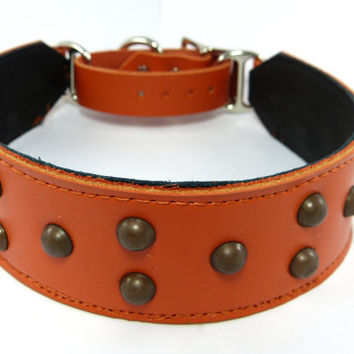 Adjustable leather martingale collar, Studded dog collar, Orange leather martingale collar for large dogs