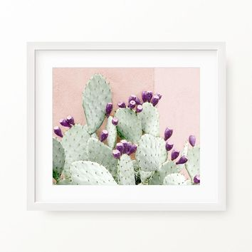 Wall Cactus In Blush - Matte Paper Poster