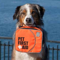 Pet First Aid Kit by Canine Friendly at BaxterBoo