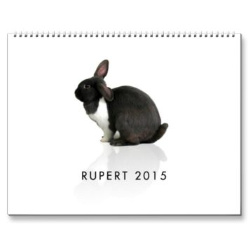 A Year WIth Rupert 2015 Wall Calendars