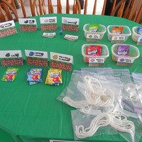 Minecraft Party Wool Dye Workshop Birthday Package Kit