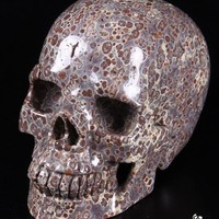 "Huge 5.3"" Asteroid Jasper Carved Crystal Skull, Realistic"