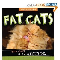2013 Fat Cats wall calendar: Big cats. Big attitude.