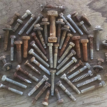 VTG Rusted Nuts, Bolts, & Screws - Desert Finds