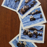 Five Sea Otter Nature and Wildlife Photo Note Cards - Set V