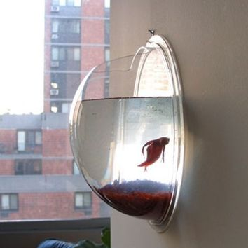 Wrapables Fish Bubble Wall Mounted Acrylic Fish Bowl