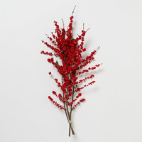 Fresh Red Winterberry Bunch