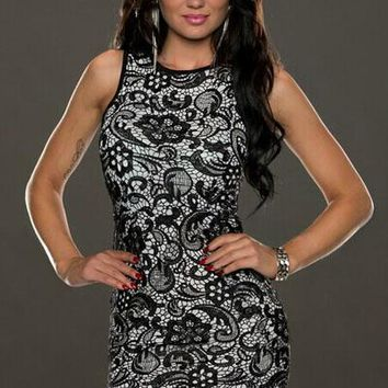 Black Lace Overlay Two-tone Vintage Dress
