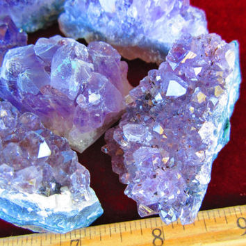 WHOLESALE AMETHYST GEODE Clusters - 1 Lb Lot of Small (1/2-3 Oz) Amethyst Geode Druse Mineral Crystals - Brazil / Uruguay by GeoSpecimens