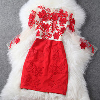 Long Sleeve Embroidered Dress in Red