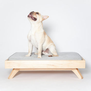 Modern Wood Dog Bed - The Joey Low Back Bed