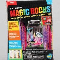 Magic Rocks Crystal Growing Kit- Assorted One
