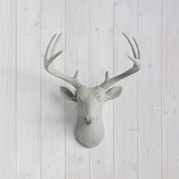 The MINI Virginia Gray Faux Taxidermy Resin Deer Head Wall Mount | Gray Stag w/ Colored Antlers