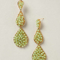 Anthropologie - Crocheted Mint Drops